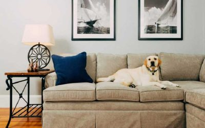 What To Avoid When Designing Your Home